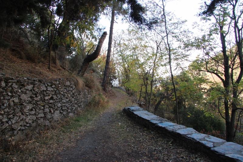 Canar-Soportuja-Pampaneira 060 (800x533)